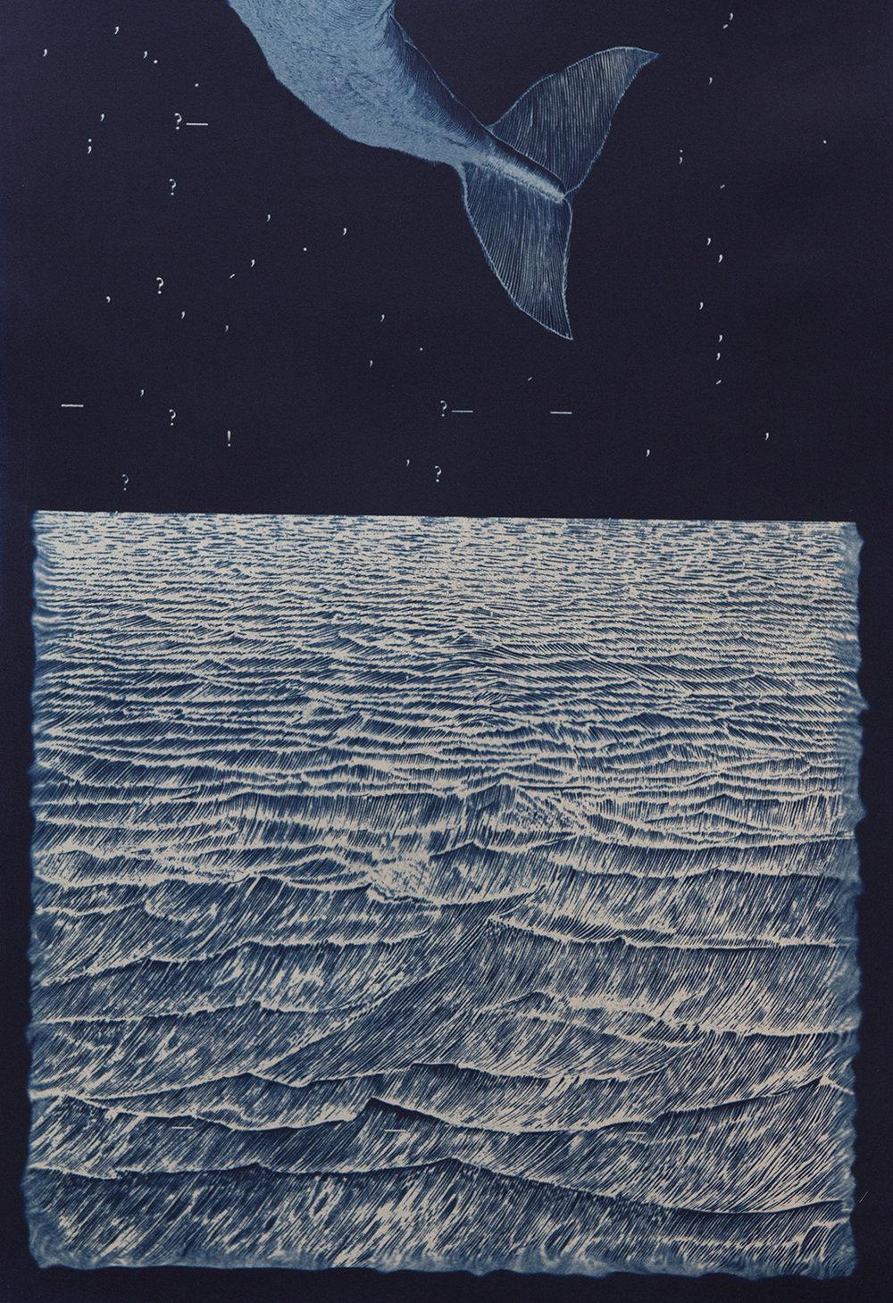 Seguin_Tails-Away_2011_cyanotype_22x15